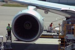 Preparando per il volo Fotografie Stock