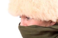 Preparando per l'inverno Immagini Stock