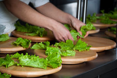 Preparando a salada para o alimento da restauração Fotos de Stock
