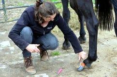 Preparando seu cavalo Imagens de Stock Royalty Free