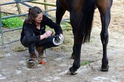 Preparando seu cavalo Imagem de Stock