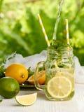 Preparando verano fresco beba con los limones y la menta imagen de archivo