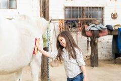 Preparar é uma parte importante de cuidado do cavalo imagens de stock