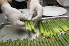 Preparation of an asparagus. A chef in a restaurant kitchen Stock Images
