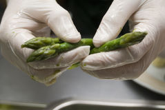 Preparation of an asparagus. A chef in a restaurant kitchen Royalty Free Stock Image