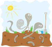 Preparation of biohumus for seedlings. Cheerful earthworms loosen the soil in the garden Stock Photo