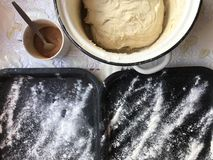 Preparation of buns with cinnamon at home. The tray is sprinkled with flour, dough and a wooden rolling pin lie on the table. Royalty Free Stock Photos
