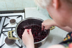Preparation of cake with cherries and raspberries. Stock Photos