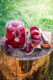 Preparation for canned beetroots in the jar Stock Image