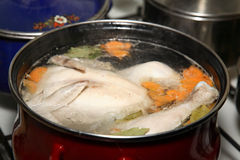 Preparation of chicken soup Royalty Free Stock Image