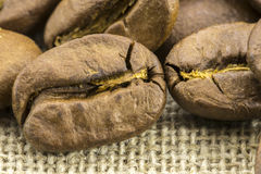 Preparation for a coffee menu is made from coffee beans. Line and burlap Stock Photos