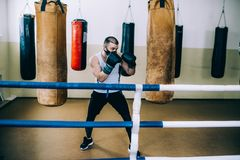 Preparation for competitions boxing royalty free stock photography