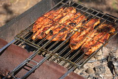 Preparation, Cooking kebabs on charcoal outdoor Royalty Free Stock Images