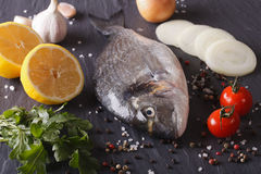 Preparation for cooking raw fish dorado with ingredients close-u Stock Photo