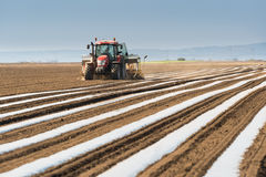 Preparation for cucumber planting at field - putting nylon foil Royalty Free Stock Photography