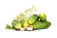 Preparation of cucumbers Royalty Free Stock Photos