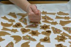 Preparation delicious cookie. Royalty Free Stock Photos
