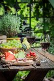 Preparation for dinner with cheese, red wine in the garden. In summer Royalty Free Stock Photography