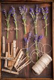 Preparation for drying lavender in summer garden. On wooden table royalty free stock photos