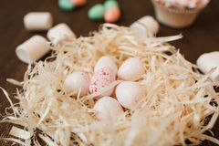 Preparation for easter. White eggs in nest closeup Royalty Free Stock Photos