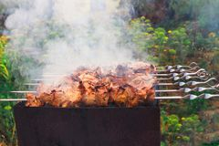 Preparation of fragrant delicious barbecue on the grill on outside stock images
