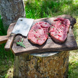 Preparation fresh beef with rosemary for grilling Stock Image