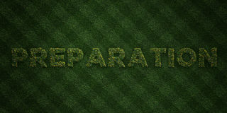PREPARATION - fresh Grass letters with flowers and dandelions - 3D rendered royalty free stock image. Can be used for online banner ads and direct mailers Royalty Free Stock Images