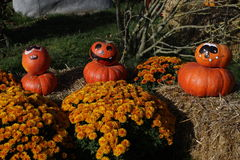 Preparation for Halloween Stock Image