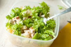 Preparation of hawaiian salad. Chopped ruddy chicken breasts with leaf salad, pieces of pineapple and crushed walnut. Stock Photos
