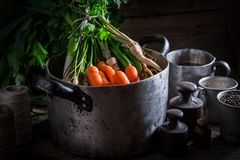 Preparation for homemade broth with carrots, parsley and leek Stock Images