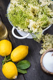 Preparation of homemade elderflower cordial Royalty Free Stock Photography