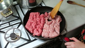Preparation of lasagne. Royalty Free Stock Images