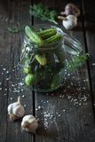 Preparation of low-salt pickled cucumbers Royalty Free Stock Photos