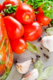 Preparation marinated conservation tomatoes with herbs, garlic, salt, and spice royalty free stock photos
