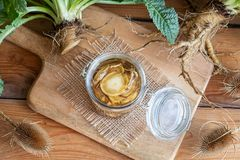 Free Preparation Of Alcohol Tincture From Wild Teasel Root Royalty Free Stock Photo - 125948055