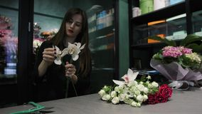Professional woman florist works in a flower shop, cuts Orchid Cymbidium, white and red roses. Preparation of Orchid Cymbidium, white and red roses for the stock video