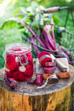 Preparation for pickled beetroots in the jar stock image