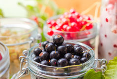 Preparation products processed fresh colorful summer fruits jars Stock Photography
