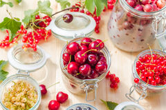 Preparation products processed fresh colorful summer fruits jars Royalty Free Stock Photo