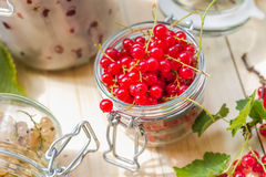 Preparation products processed fresh colorful summer fruits jars Stock Photos