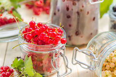Preparation products processed fresh colorful summer fruits jars Stock Images