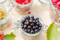 Preparation products processed fresh colorful summer fruits jars Stock Image