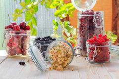 Preparation products processed fresh colorful summer fruits jars Stock Photo