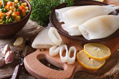 Preparation of raw squid and ingredients close-up. Horizontal Stock Photos