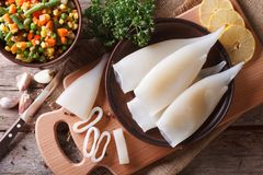 Preparation of raw squid and ingredients horizontal top view Royalty Free Stock Photos