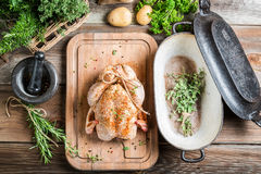 Preparation for roasting chicken with herbs Royalty Free Stock Photography