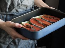Preparation of salmon. Female hands with a lime slice. A pot with raw salmon steaks. royalty free stock image