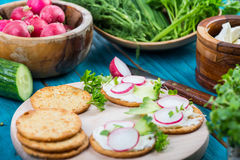 Preparation of salty crackers with fresh radish Stock Images