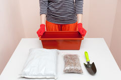 Preparation of seeds and room for planting in the soil. Plastic container, drainage, fertilizer, earth, seeds, plants, flower pot. Preparation of seeds and room Royalty Free Stock Image