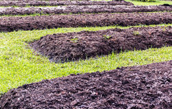 Preparation Of Soil Stock Photos